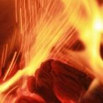 Holzverbrennung: Was passiert da eigentlich?