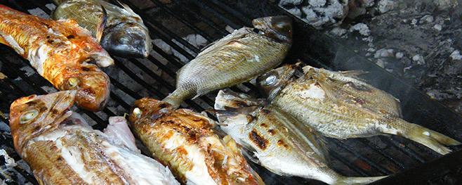 Fisch-richtig-grillen