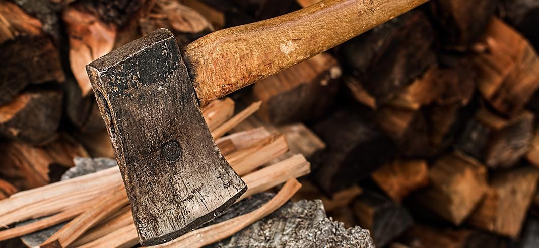 brennholz selber schlagen das ist der beste zeitpunkt. Black Bedroom Furniture Sets. Home Design Ideas