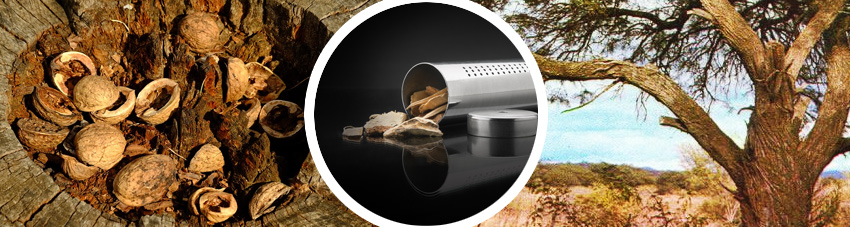 Bildfolge Hikory und Mesquite als Räucherchips
