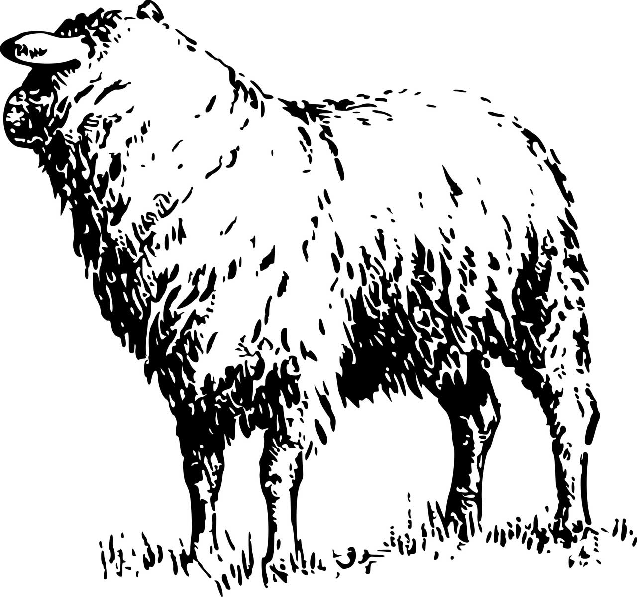 Icon Schaf in schwarz weiß