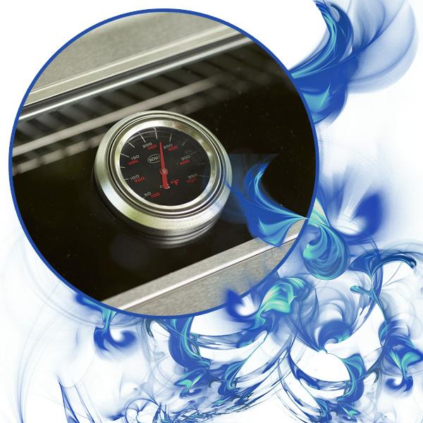 Bild der Rösle Temperaturanzeige, umrahmt mit blauen Flammen