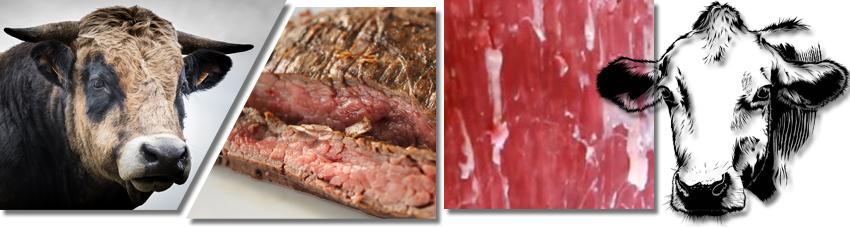 Collage diverser Fotos mit einem Bullen, zubereitetem Flank-Steak und ner Fleischmaserung im Rohzustand