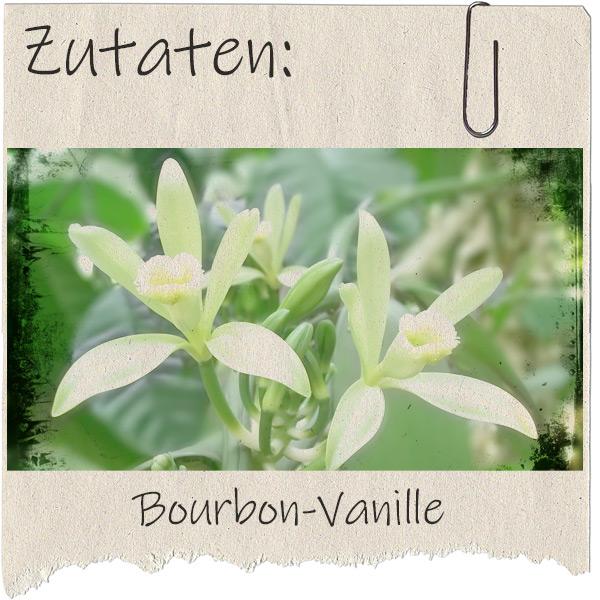 rausgerissenes Blatt Papier mit Foto einer Vanilleblüte