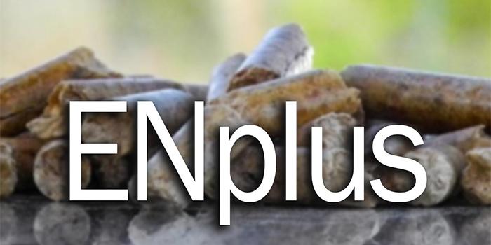 ENplus-1