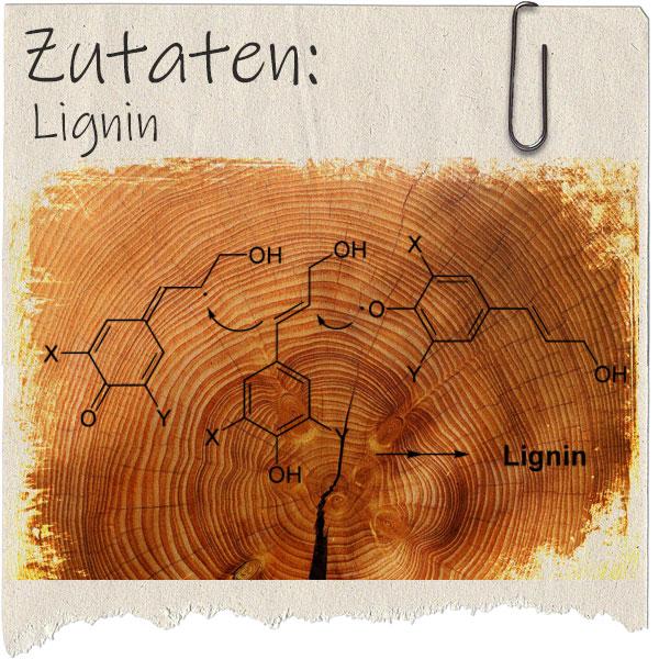 rausgerissenes Blatt Papier mit Foto einer Holzscheibe und Lignin-Formel