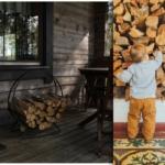 Brennholz lagern: Was Sie unbedingt beachten sollten