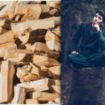 Brennholz trocknen: Der Komplett-Guide für Selbermacher