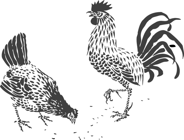 illustriertes Hühnerpaar
