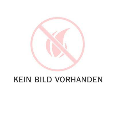 Umbauset Zündung und Zündrohr Haas und Sohn Pelletofen HSP 1, HSP 2 (0571207016510)