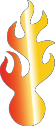 Skanderborg Icon Moderne Feuerungstechnik
