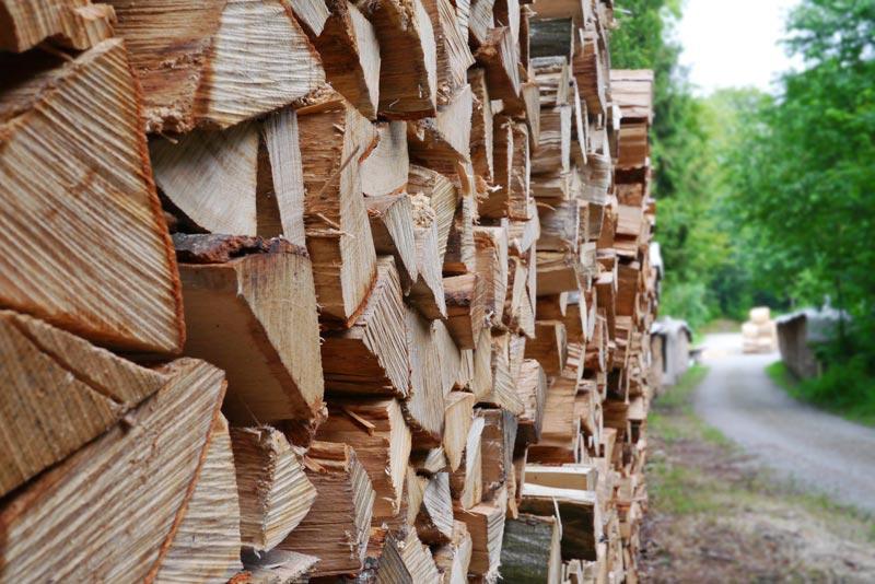 Außergewöhnlich Brennholz Lager. Fototapete Brennholz Lager With Brennholz Lager @IS_76