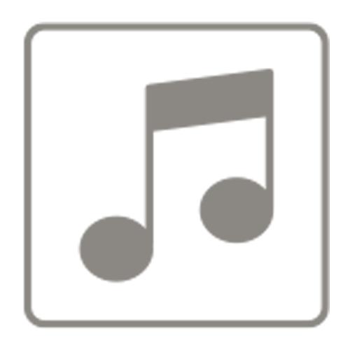Faber Sound Modul