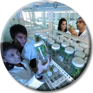 Vier Wissenschaftler im Labor