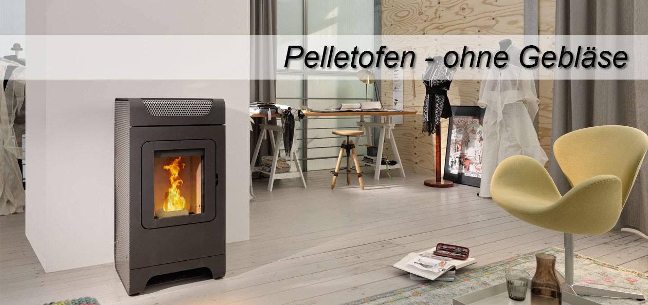 Ambientebild Pelletofen Austroflamm Ben