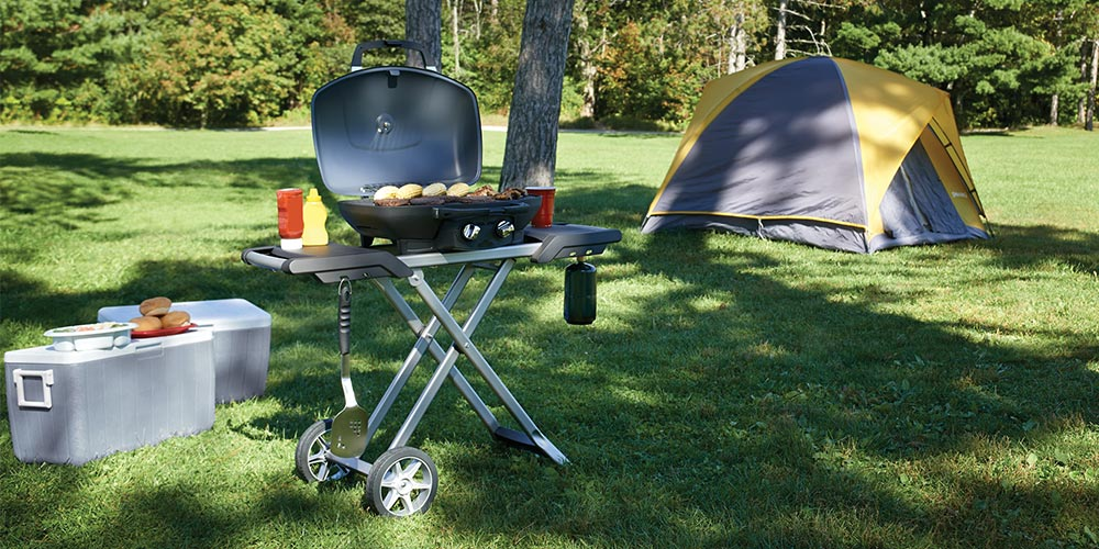 Camping Grill Napoleon TravelQ TQ285X