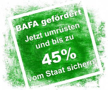 BAFA Förderung vom Staat