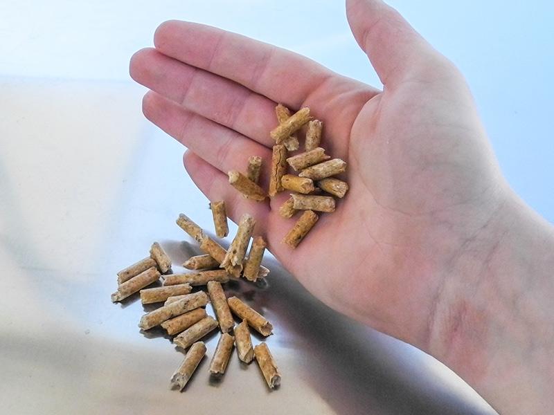 Holzpellets Selber Machen Wie Geht Das Brennstoffe Infothek
